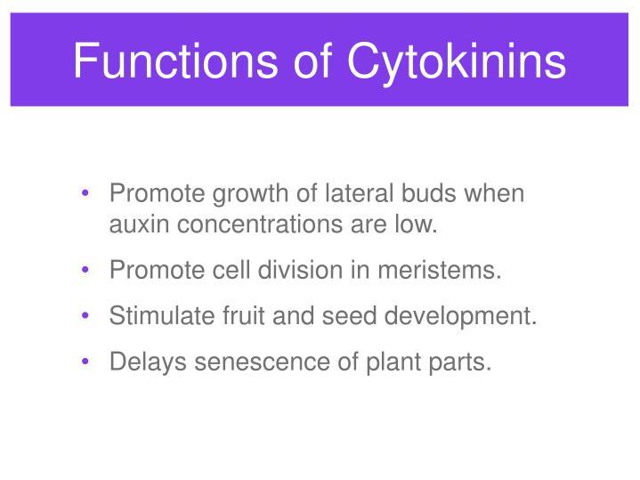 Functions of Cytokinins