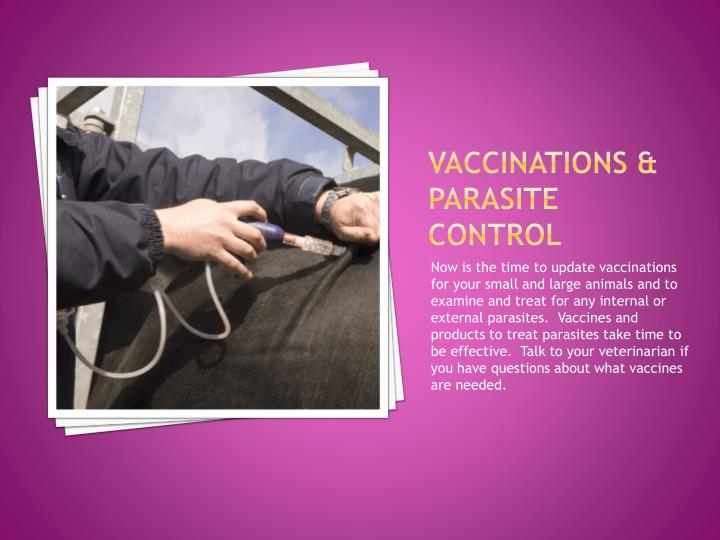 Vaccinations parasite control