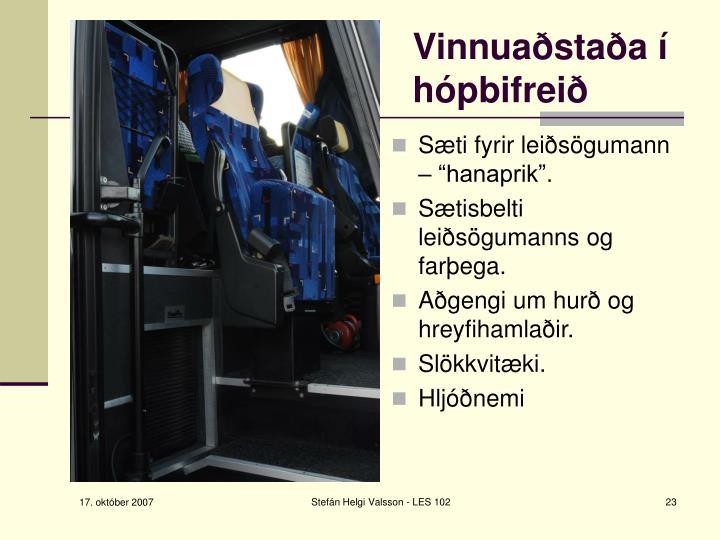 """Sæti fyrir leiðsögumann – """"hanaprik""""."""