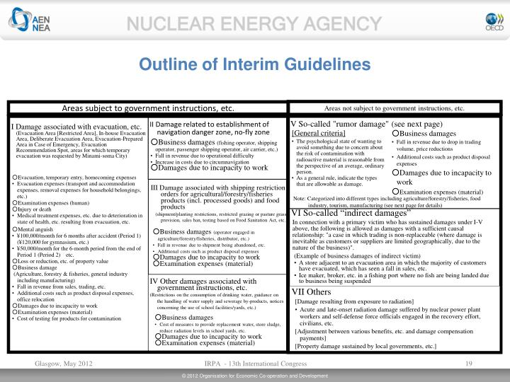 Outline of Interim Guidelines