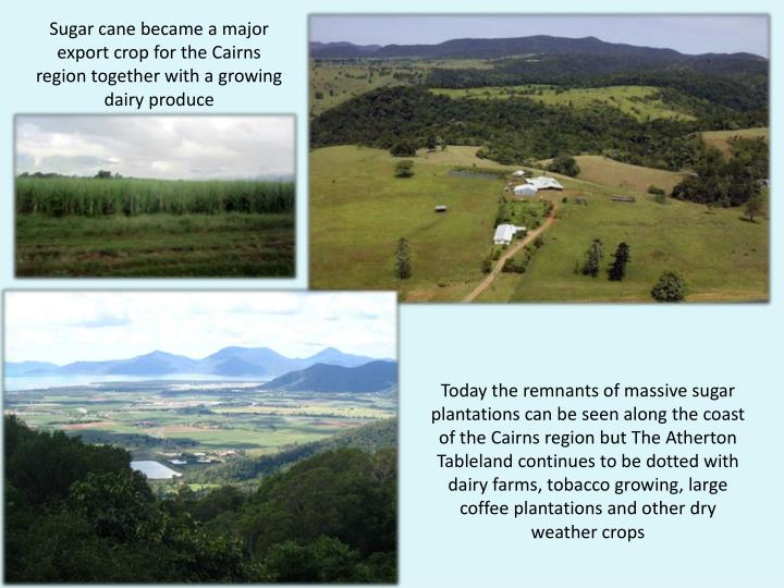 Sugar cane became a major export crop for the Cairns region together with a growing dairy produce