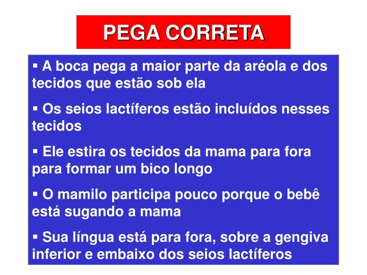 PEGA CORRETA