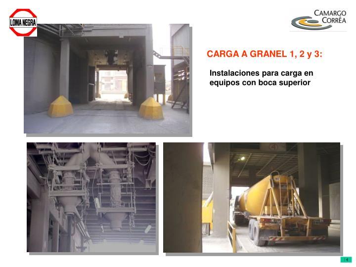 CARGA A GRANEL 1, 2 y 3:
