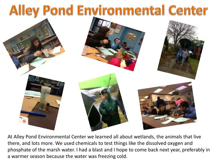 Alley Pond Environmental Center