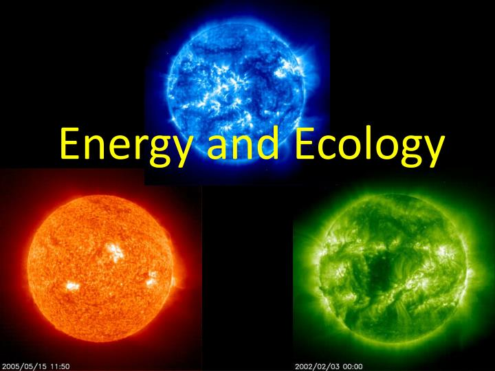 Energy and ecology