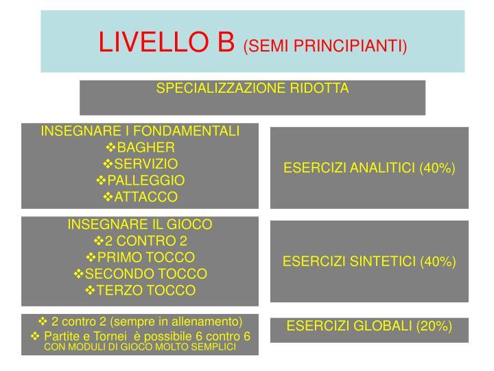LIVELLO B