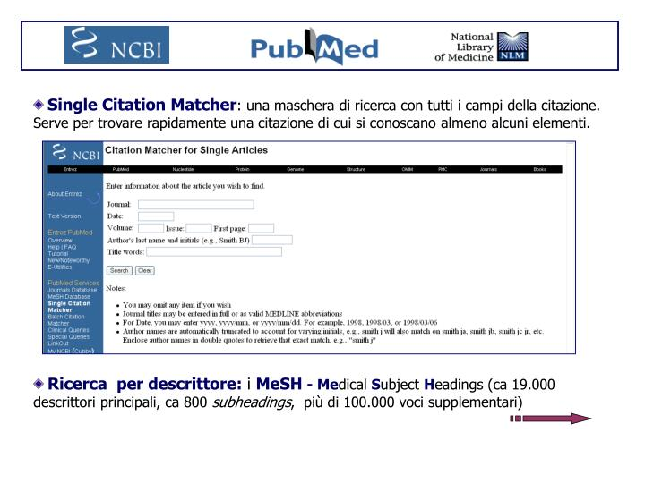 Single Citation Matcher