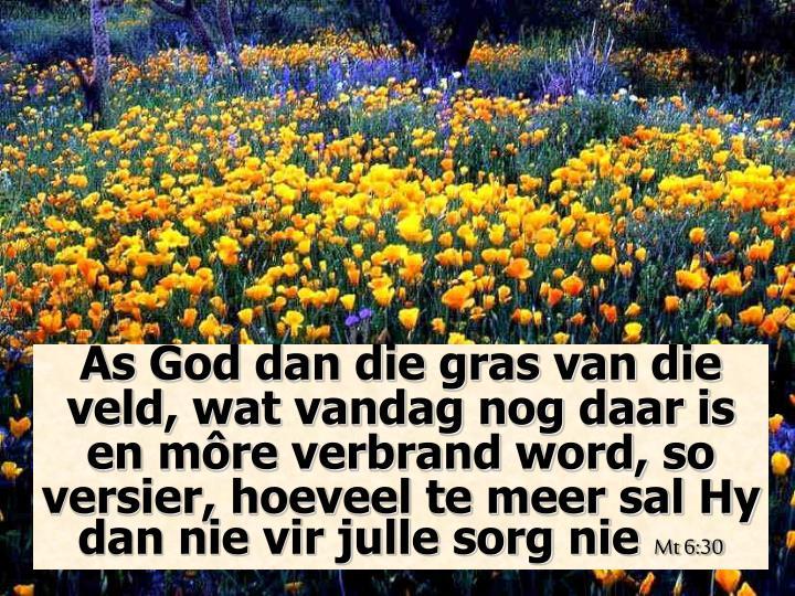 As God dan die gras van die veld, wat vandag nog daar is en môre verbrand word, so versier, hoeveel te meer sal Hy dan nie vir julle sorg nie