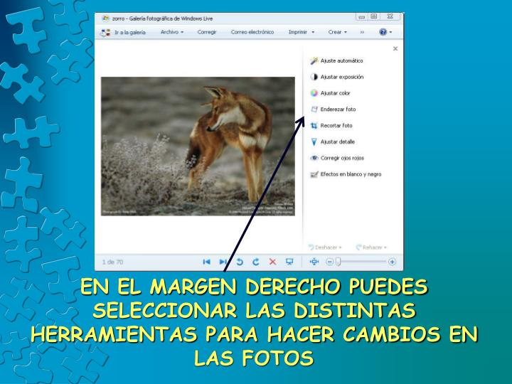 EN EL MARGEN DERECHO PUEDES SELECCIONAR LAS DISTINTAS HERRAMIENTAS PARA HACER CAMBIOS EN LAS FOTOS