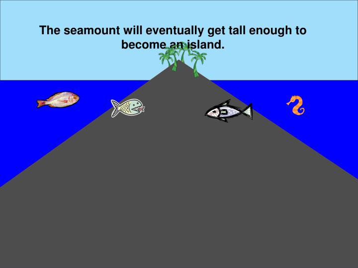 The seamount will eventually get tall enough to become an island.