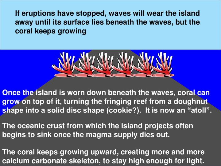 If eruptions have stopped, waves will wear the island away until its surface lies beneath the waves, but the coral keeps growing