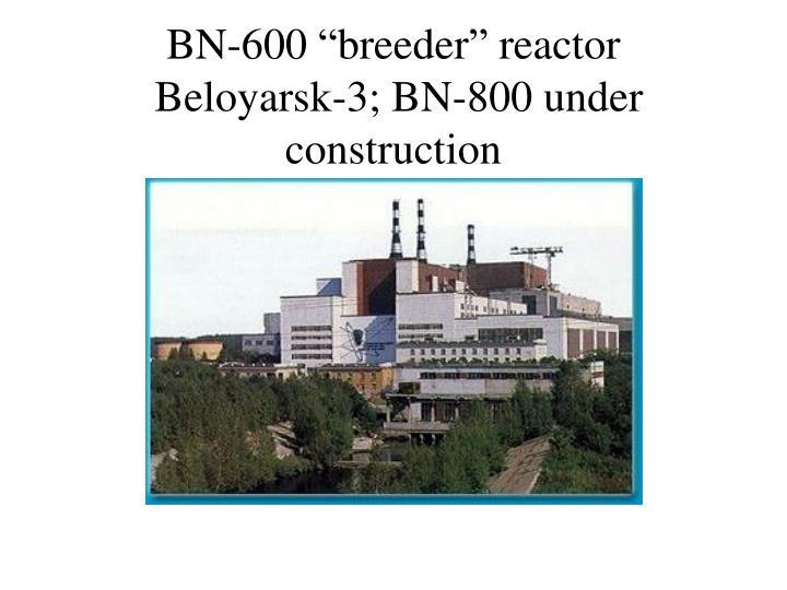 """BN-600 """"breeder"""" reactor"""