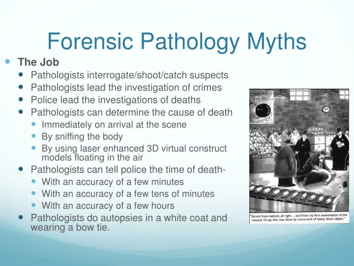 Forensic Pathology Myths