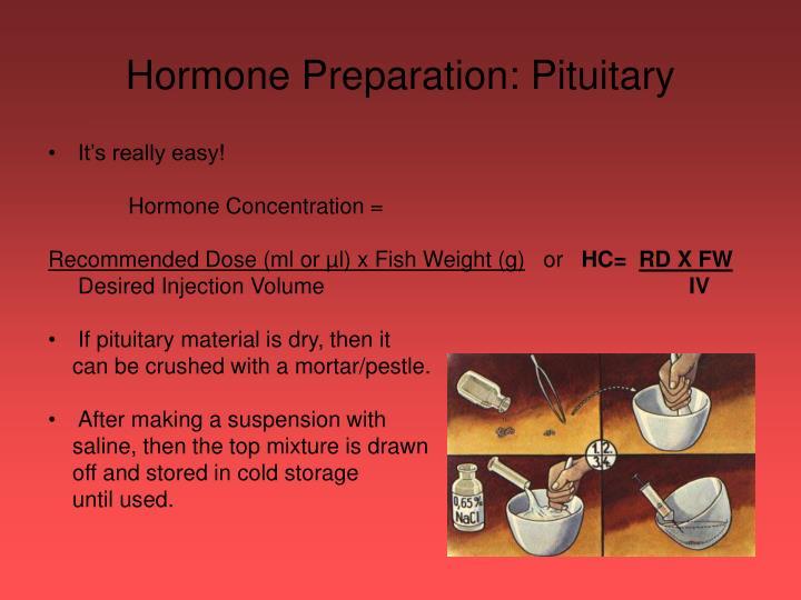 Hormone Preparation: Pituitary
