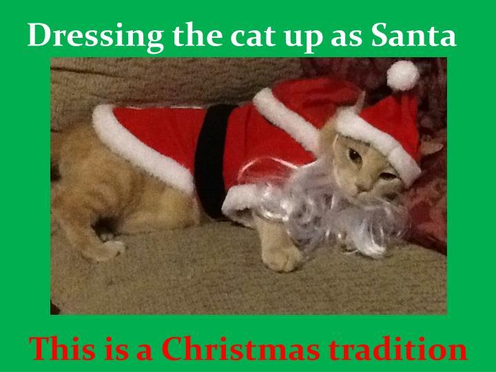 Dressing the cat up as Santa