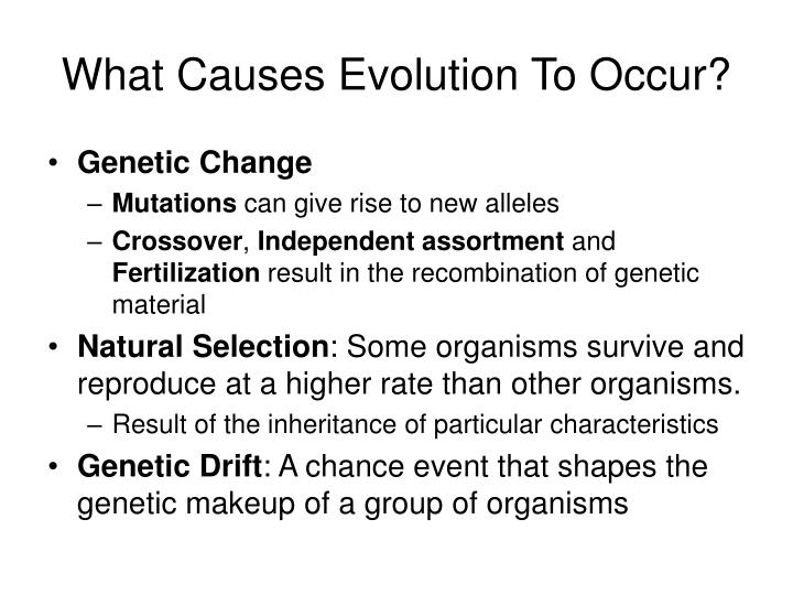 What Causes Evolution To Occur?