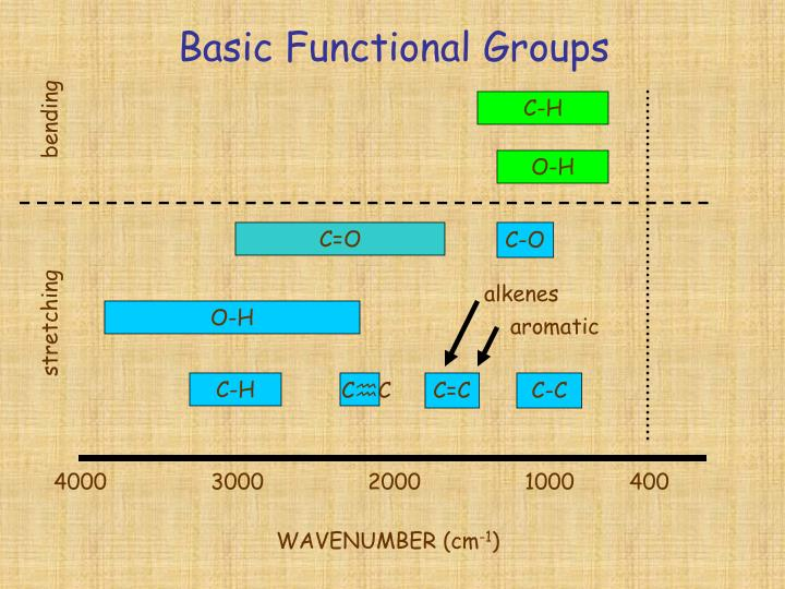 Basic Functional Groups