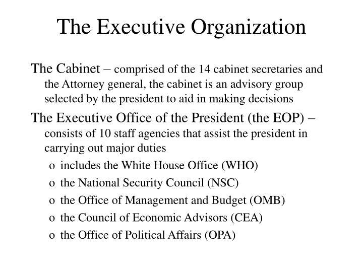The Executive Organization