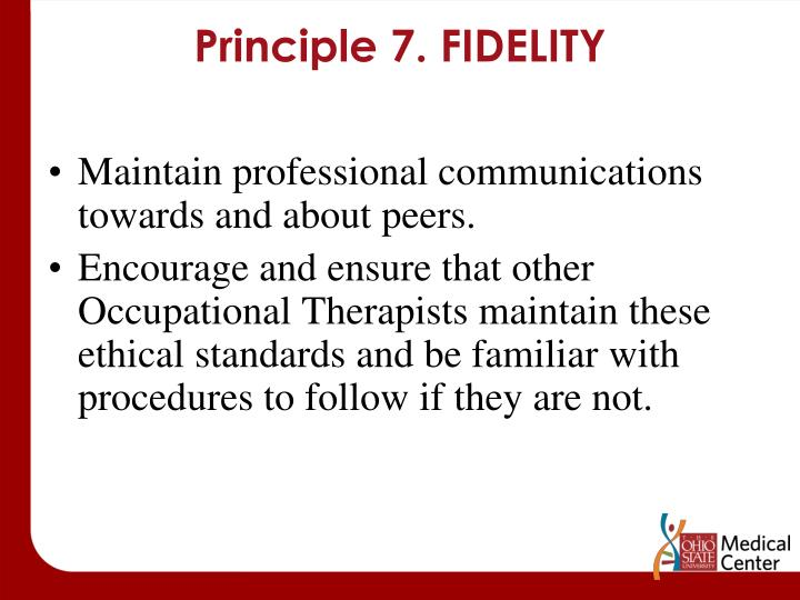 Principle 7. FIDELITY