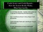 credit scores and credit reports how the system really works what you can do1