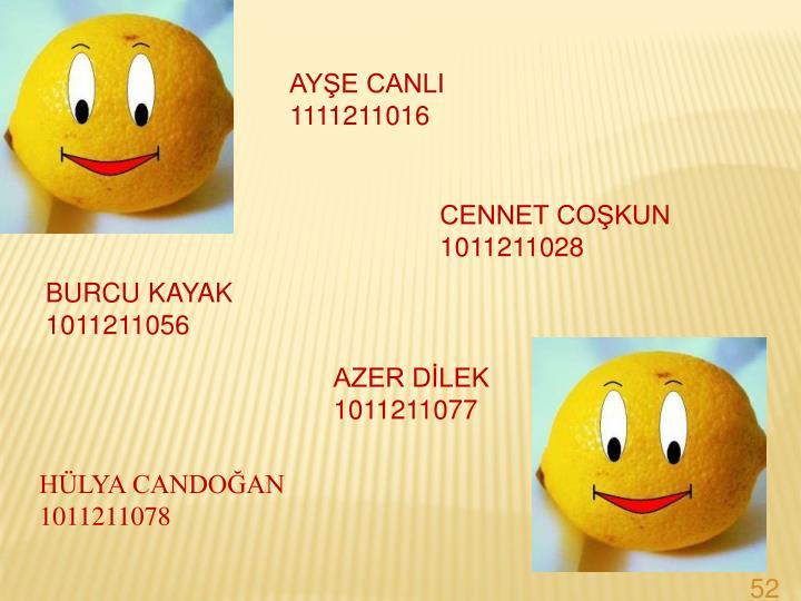 AYE CANLI