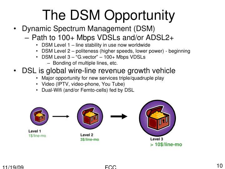 The DSM Opportunity