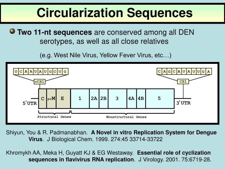 Circularization Sequences