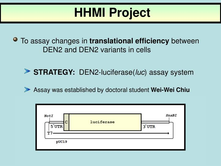 HHMI Project