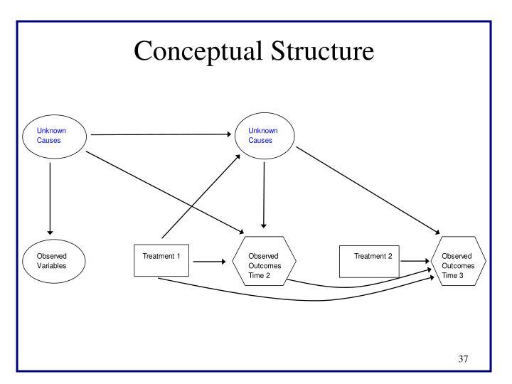 Conceptual Structure