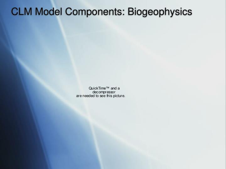 CLM Model Components: Biogeophysics