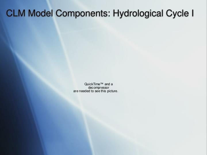 CLM Model Components: Hydrological Cycle I