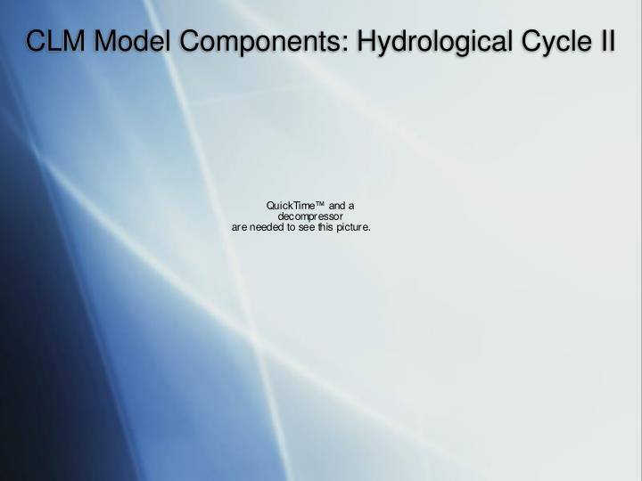 CLM Model Components: Hydrological Cycle II