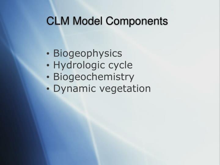 CLM Model Components