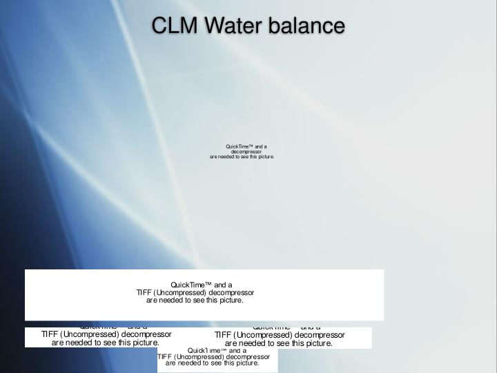 CLM Water balance