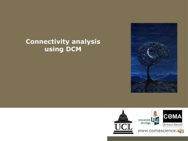 Connectivity analysis