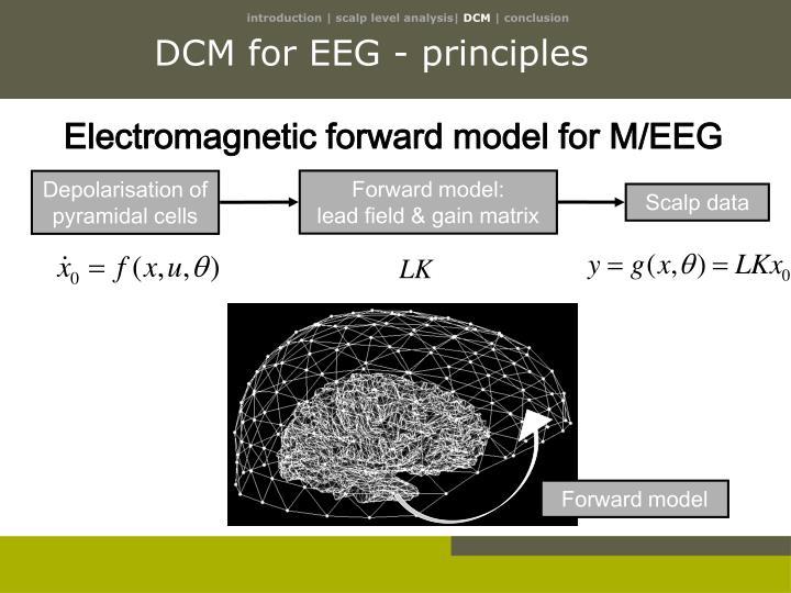 DCM for EEG - principles