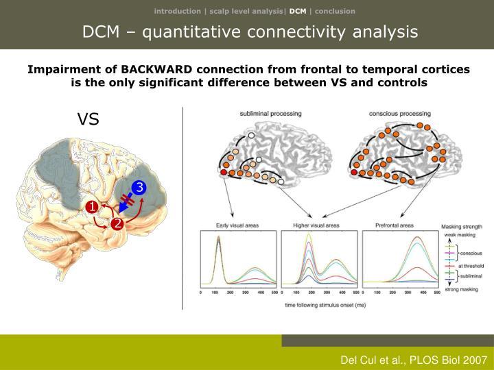DCM – quantitative connectivity analysis
