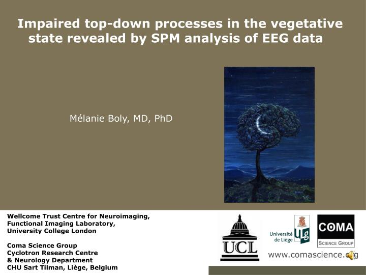 Impaired top down processes in the vegetative state revealed by spm analysis of eeg data