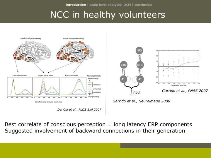 NCC in healthy volunteers