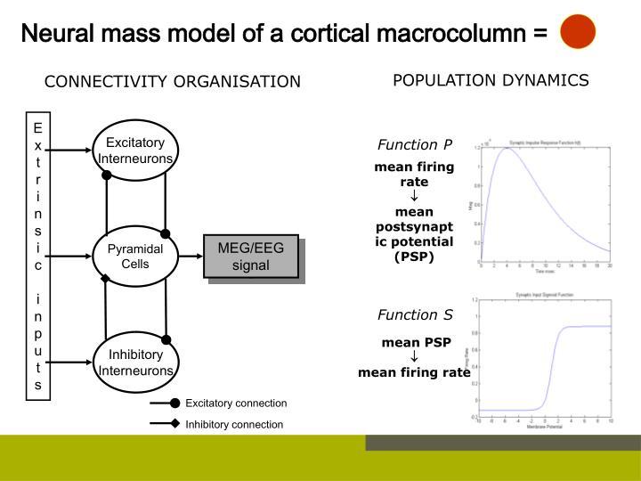 Neural mass model of a cortical macrocolumn =