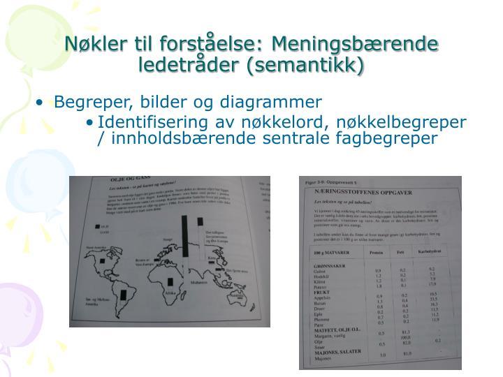 Nøkler til forståelse: Meningsbærende ledetråder (semantikk)