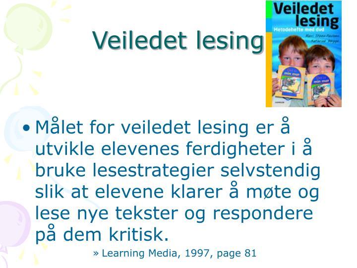 Veiledet lesing