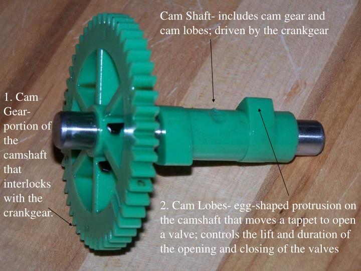 Cam Shaft- includes cam gear and cam lobes; driven by the crankgear