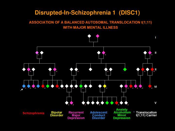 Disrupted-In-Schizophrenia 1  (DISC1)