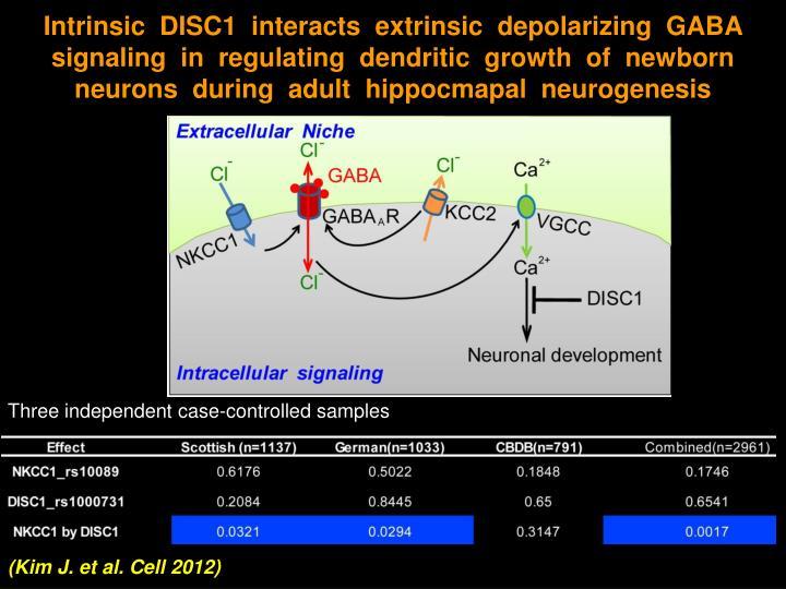 Intrinsic  DISC1  interacts  extrinsic  depolarizing  GABA signaling  in  regulating