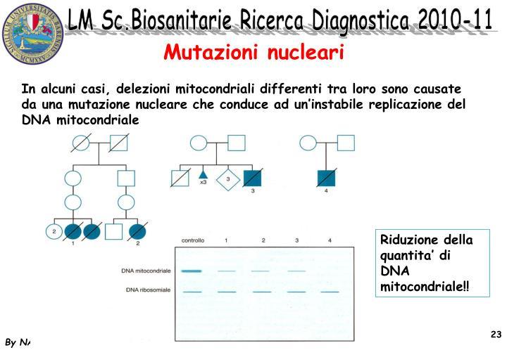 Mutazioni nucleari