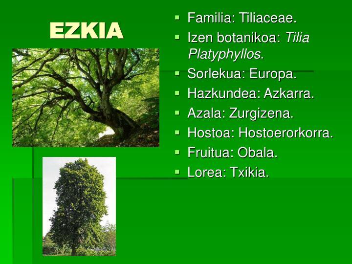 EZKIA