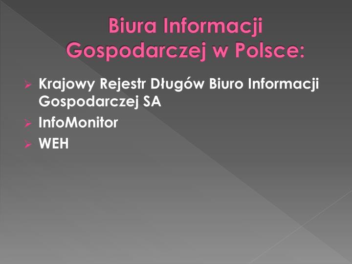 Biura Informacji Gospodarczej w Polsce: