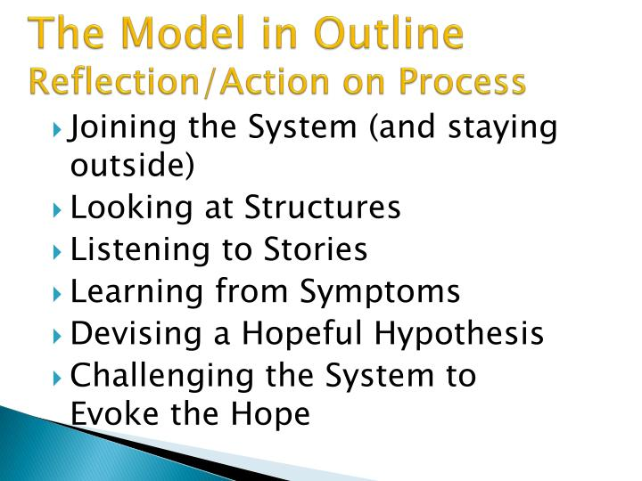 The model in outline reflection action on process