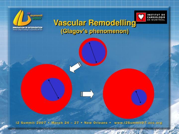 Vascular Remodelling